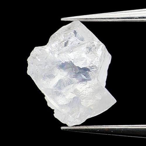0.73 Ct Natural Loose Diamond Rough White F Color VS1 Clarity 6.45 MM L9451