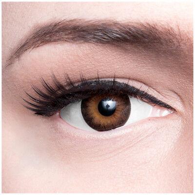 """Braune Farbige Kontaktlinsen """"Dark Hazel"""" Mit Stärke Beauty Braun farbig dunkel"""