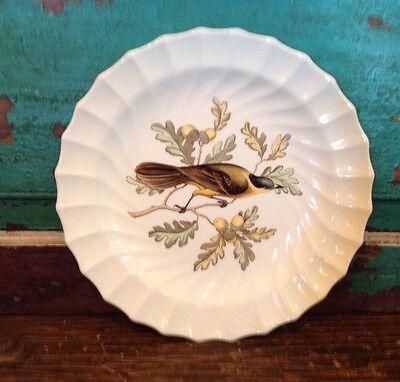 """Antique Spode Copeland Plate, England, Bird, Canada Jay, 8 7/8"""" Round"""