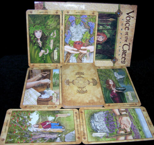 SEALED  NEW! VOICE OF THE TREES ORACLE CARDS & BOOK CELTIC OGHAM MYSTERIES MAGIC