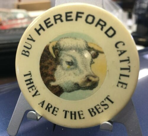 Antique Lapel Pin, Buy Hereford Cattle They are the Best  Free Ship