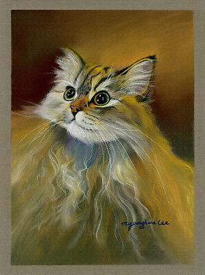 - ACEO Limited Edition- Maine coon, Cat art print, Gift for animal lovers
