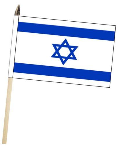 Israel Large Hand Waving Courtesy Flag