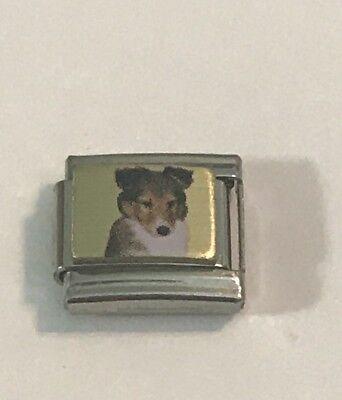Collie Dog - Sheltie - Puppy - Photo Charm 9mm Italian Charm Link For Bracelet