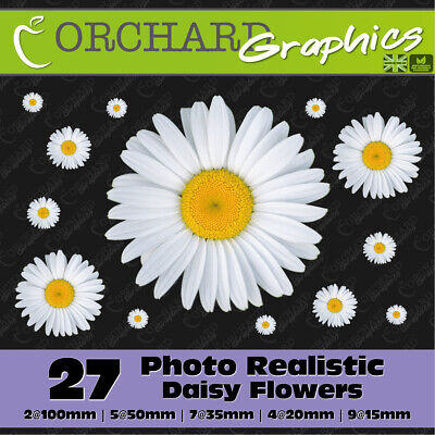 27 Daisy Flower Car Stickers Vinyl Decals Graphics Bedroom Wall Art Realistic