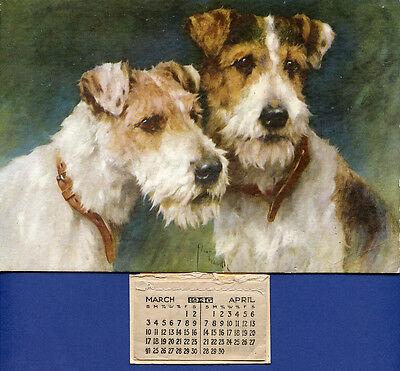 WIRE FOX TERRIER WFT DOG FINE ART PRINT CARD - by Arthur Wardle - 1946 Calendar