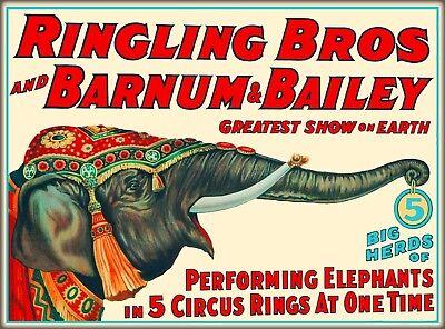 Ringling Brothers Barnum Bailey Circus Elephant Vintage Travel Art Poster Print Barnum Bailey Circus Posters