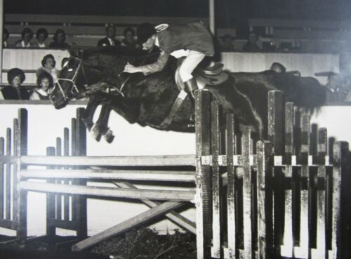 """Vintage Equestrian Horse Jumping Photo 14"""" English Show Riding Young Man 1950"""
