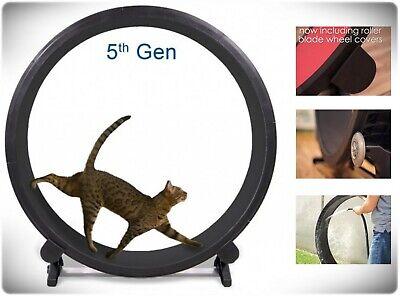 Indoor Cat Exercise Wheel Kitty Running Training Toy Treadwheel Treadmill Pet