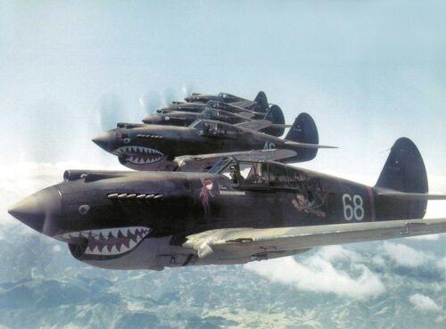 """USAAF Curtiss P-40 Warhawk ((8.5""""x11"""")) Print"""