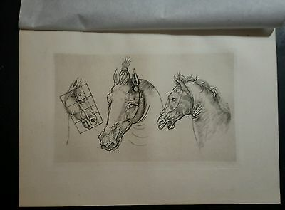 after Leonardo da Vinci  by AMAND DURAND 1880 horses