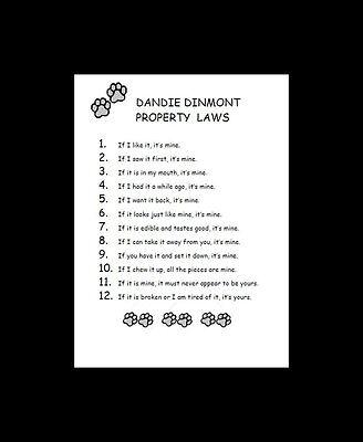 Dandie Dinmont Dog Art Print - Matted - P/L