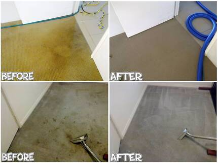 Professional and Reliable Carpet Cleaning