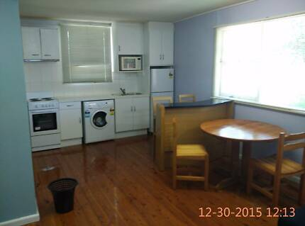Fully furnished spacious one bedroom granny flat in Ermington