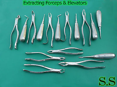 20 Extracting Forceps Elevators Surgical Dental Instruments