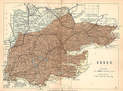 1889 HAND COLOURED GEOLOGICAL MAP ~ ESSEX PLANTS SHELLS GEOLOGY RAILWAYS