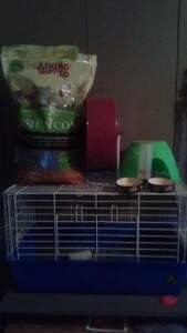 Pet Cage and Accessories