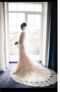 Beautiful Mermaid Lace Gown