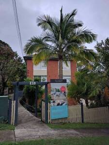 Room for rent Balgowlah Manly Area Preview