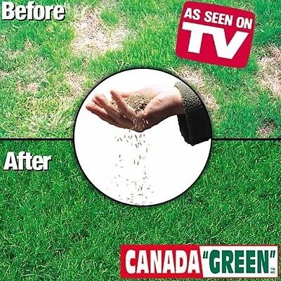 Canada Green Grass Lawn Seed Mixture 4 LBS Bag
