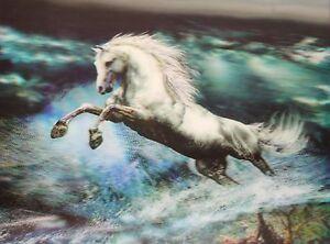 3D Poster Wandbild Lentikularbild 3D Fotos Pferde Horses 295x395mm ohne Rahmen