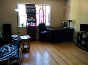 South End 2 Bedroom Apartment Near Hospitals and University