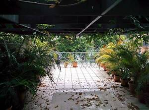 Large ensuite room beside the river, 10 minutes walk to UQ St Lucia Brisbane South West Preview