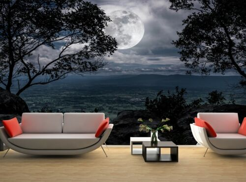 Full Moon Nature  Photo Wallpaper Wall Mural DECOR Paper Poster Free Paste