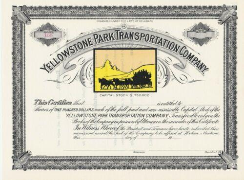YELLOWSTONE PARK TRANSPORTATION COMPANY STOCK CERTIFICATE SCARCE NATIONAL PARK
