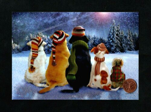 CHRISTMAS Puppy Dogs Knit Stocking Hats Scarves Snow Greeting Card - W/ TRACKING
