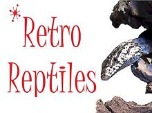 Brand New Reptile Enclosures Brisbane City Brisbane North West Preview