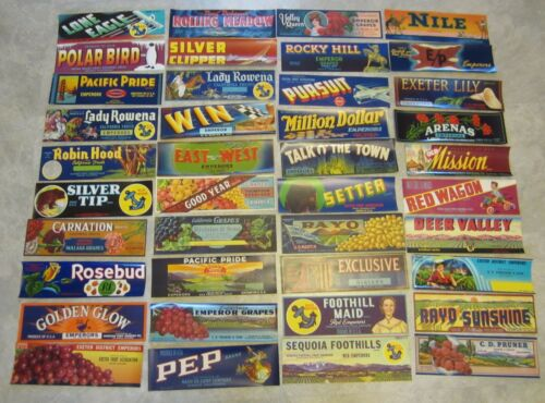 Lot of 40 Old Vintage - CALIFORNIA GRAPE - Crate LABELS - ALL DIFFERENT - Grapes