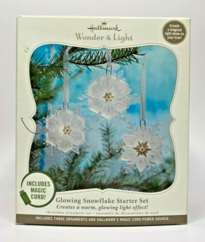 2010 Hallmark Glowing Snowflake Starter Set Wonder & Light U21