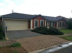 Great house, Perfect location 2 BIG Rooms for $200 p/w! Klemzig Port Adelaide Area Preview