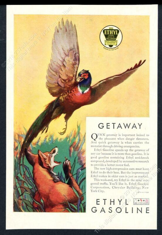 1930 pheasant fox color art Ethyl gas vintage print ad