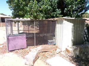 Cat Enclosure For Sale Perth