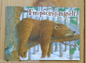 Leanin-Tree-Flex-Magnet-Bear-Napping-in-Woods-on-Tree-Branch-Im-Pacing-Myself