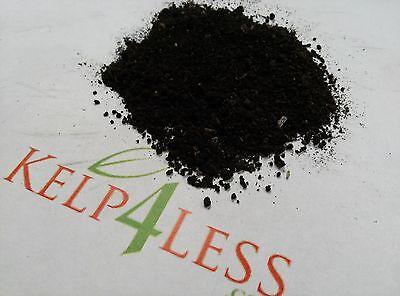 5 LBS The Best Organic Worm Castings Odorless Soil Enhancer for All (Best Fertilizer For Plants)