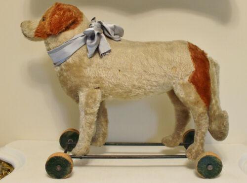 Antique STEIFF ST. BERNARD DOG pull toy on wheels Button in Ear ~ Sweet face
