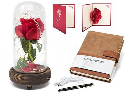 Christmas Gifts for Women Beauty and the Beast Rose Enchanted Rose Flower ()