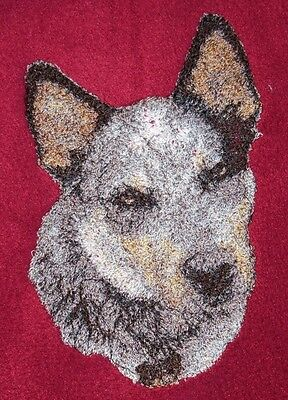 - Embroidered Sweatshirt - Australian Cattle Dog AED16215 Sizes S - XXL