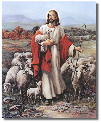 Shepherd Lamb - Jesus The Shepherd holding Lamb With Sheep In Meadow  Wall Art Print Picture