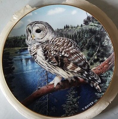 "On The Lookout"" Barred Owl Plate 1992 Danbury Mint"