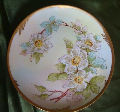 """ANTIQUE HAND PAINTED PLATE  PICKARD ARTIST """"WALTERS"""" , WILD ROSES, 8 3/4"""""""