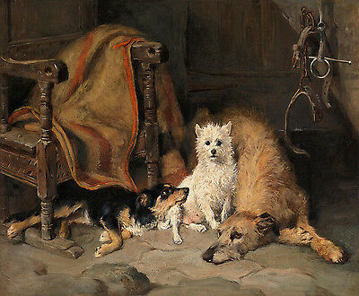 - Emms John Deerhound West Highland Terrier And A Border Collie Canvas    #5352