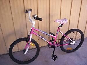 Little Girls & Little Boys Push Bikes Lakemba Canterbury Area Preview
