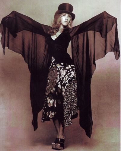 BEAUTIFUL Stevie Nicks of Fleetwood Mac - 16x20 photo! #3