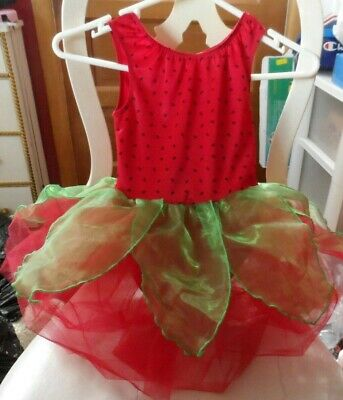 Red Green Costume (Girls red & green Strawberry / watermelon costume size small 5-6)