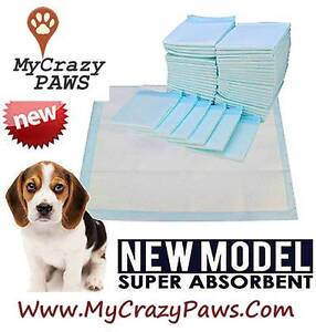 New Puppy or Cat Toilet Training Pads Super Absorbent 60x60cm 50p Sydney City Inner Sydney Preview
