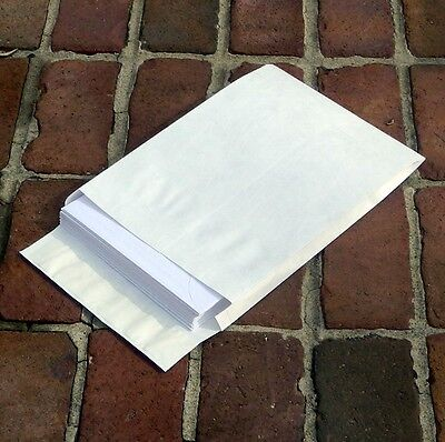 10 X 13 X 1 12 Tyvek Expansion Envelopes 100lot